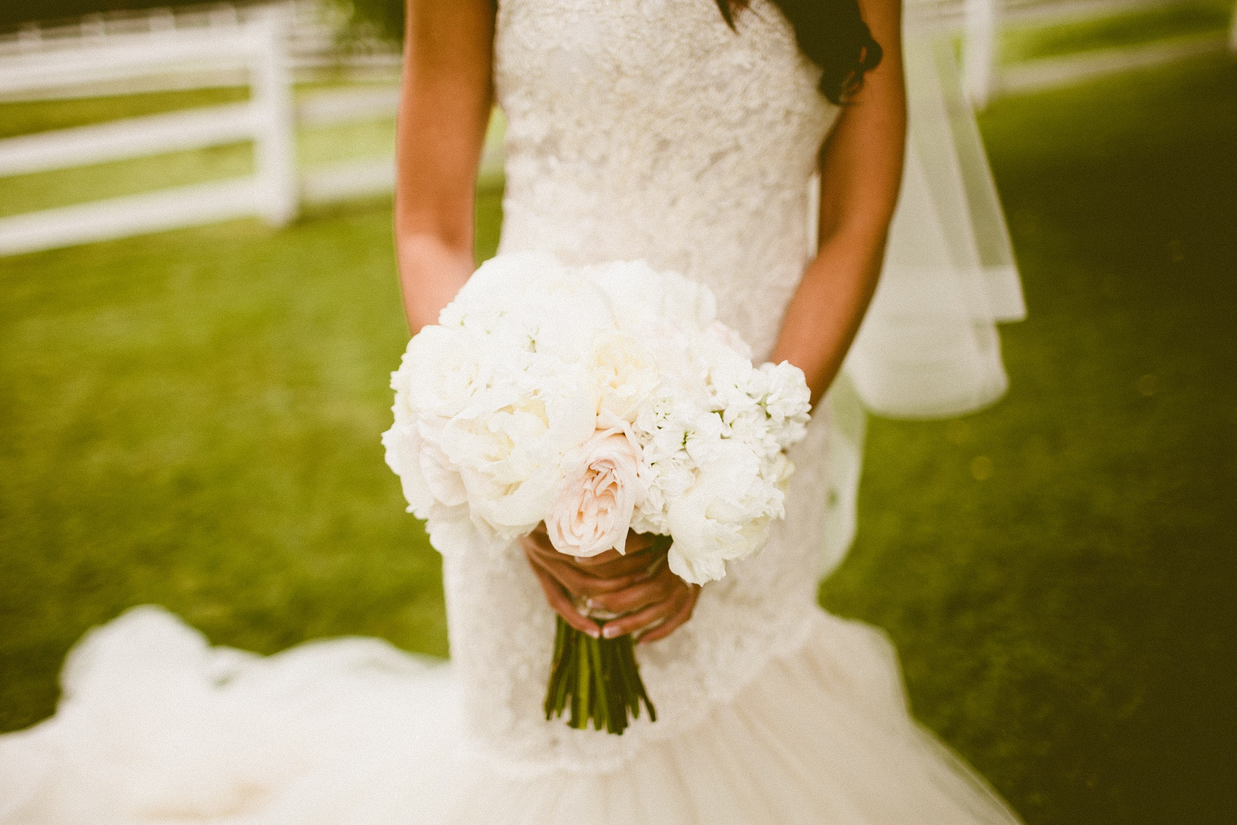 Andria Lindquist Photography | Butter & Bloom